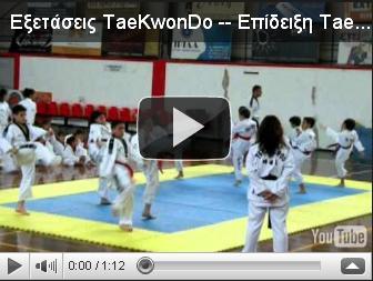 VIDEO: Επίδειξη Tae Kwon Do 04/06/2011  ( 3 )
